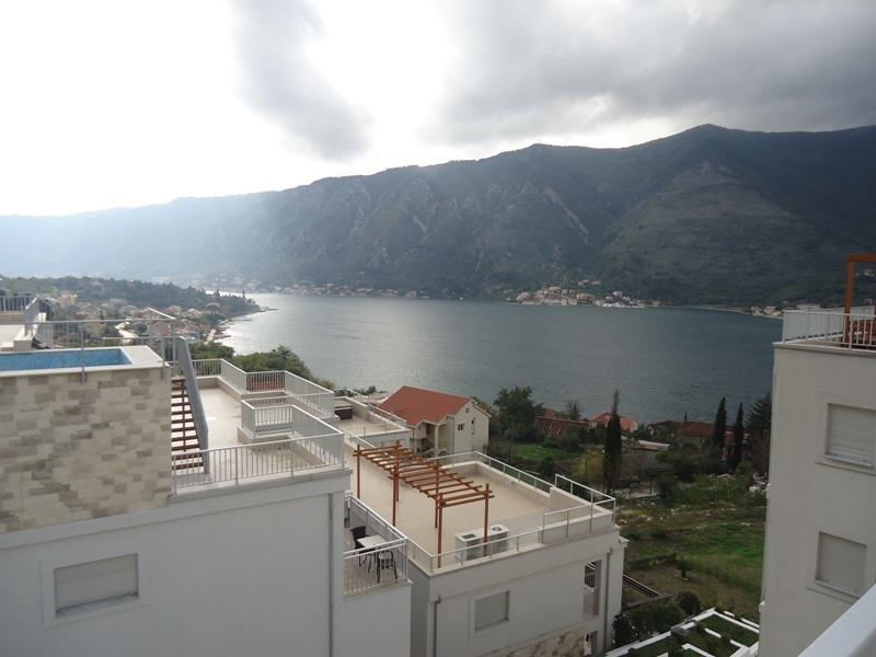 как управлять русским авто в черногории